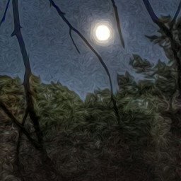 good photography moon oilpaintingeffect