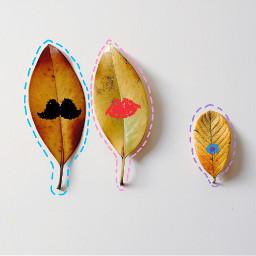 freetoedit leaffamily