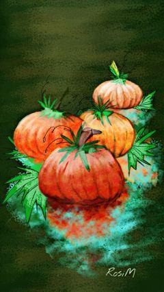 digitaldrawing drawing harvest pumpkin autumn wdppumpkin