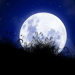 freetoedit notmyartwork moon night background