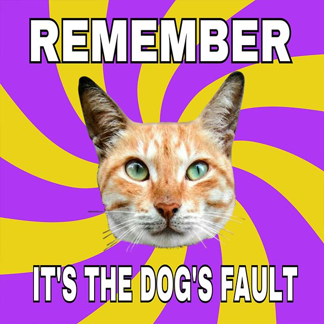 Funny Meme - Tutorials - PicsArt