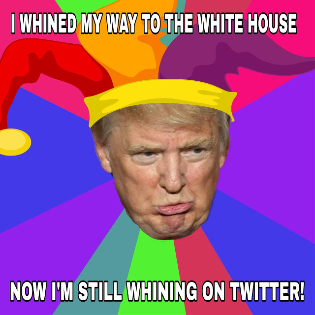 #meme #madewithpicsart Photo not by me! #madebymelikealltheotherpicstoo #DontbeaTrumpwhiner #justforlaughs  #FreeToEdit #funnymeme