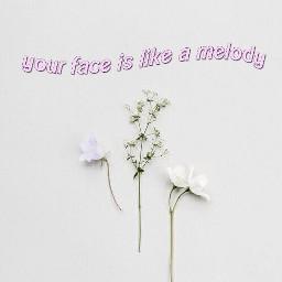 pink simplicity flower aesthetics tumblr