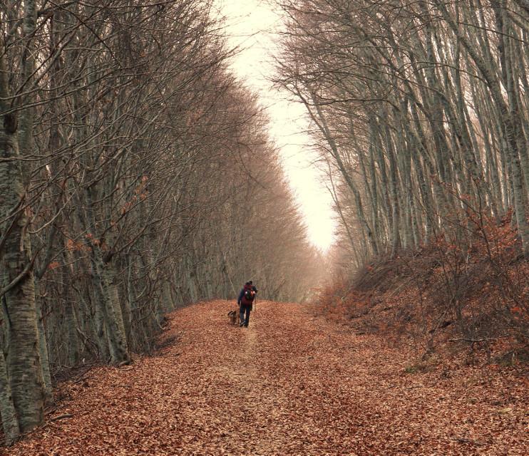 #nature  #colorful  #photography  #travel  #Picsart  #autumn