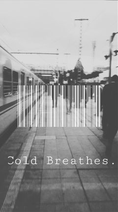 cold winter blackandwhite deep freetoedit